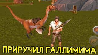ПРИРУЧИЛ ГАЛЛИМИМА! ОЧЕНЬ МОЩНЫЙ ДИНОЗАВР! - Jurassic Survival Island: ARK 2 Evolve