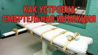 Как устроена смертельная инъекция Plushkin