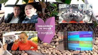 видео Shols покупательские тележки  заказать в интернет-магазине
