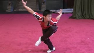 Wushu Eagle Style Form - Instructional