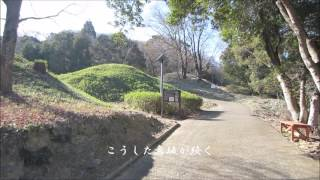 岩橋千塚古墳群2-3(後期)(和歌山県)Iwasesennzuka Tumuli 2-3(Wakayama Pref.)