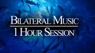 1 HR Bilateral Music Session 🎧 Treat Anxiety, Stress, Insomnia   Gentle Low Beat 200 BPM   Aquarium