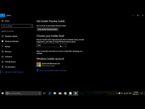 What are the differences between the Windows 10 Insider  levels