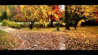 Seasons in Ann Arbor Michigan Autumn and Winter