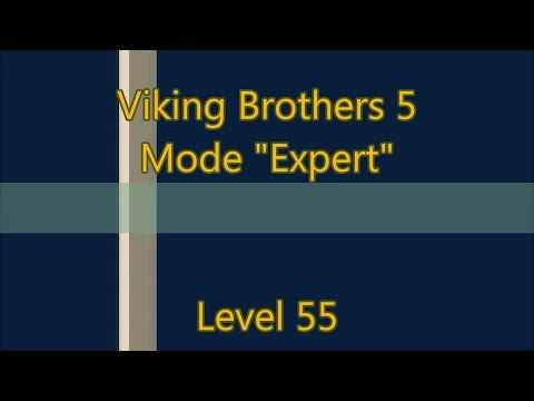 Viking Brothers 5 Level 55 |