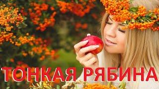 Тонкая рябина-Русские народные песни-Застольные песни на синтезаторе synthesizer Yamaha MODX6