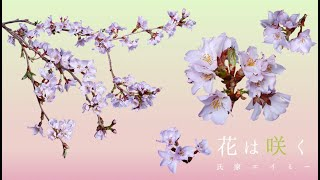 【カバー】花は咲く / 氏家エイミー