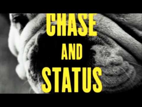Brixton Briefcase ft. Ceelo Green - Chase and Status (No More Idols)