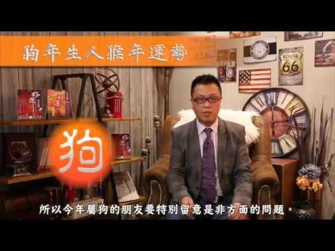 龍震天 2016 猴年運程 - 狗