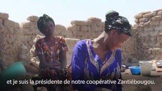 L'énergie solaire dynamise les petites entreprises féminines au Mali