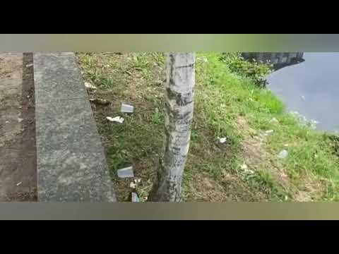 Los vecinos de Monforte, hartos de los botellones en el paseo del Cabe