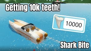 GETTING 10K (10 000) TEETH | SHARK BITE (ROBLOX)!