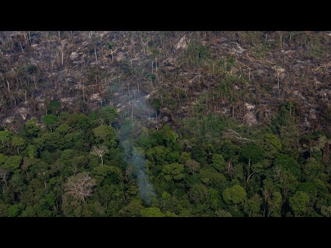 Brazil fires threaten environment, way of life