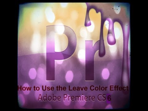 How To Use The Leave Color Effect In Adobe Premiere Pro CS6
