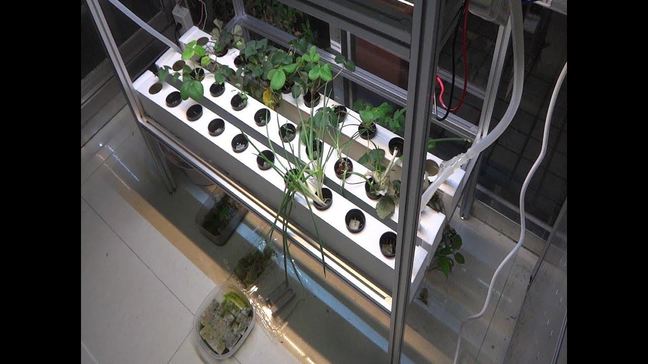 Green house NFT hydroponics aluminum rack  PVC gully DIY