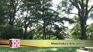 Plzeň v kostce (1.9.-7.9.2014)