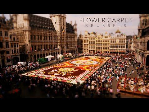 Flower Power in Brussels