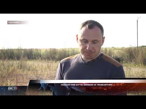 Небезпечний бур'ян виявили на Тисмениччині