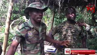 LIVE-MILITARY TRAINING. ACHIASE JUNGLE. HOW TO SURVIVE IN THE FOREST