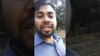 Duck farm bangladsh