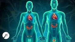 Heilende Frequenzen (1335 Hz) - Hormonsystem stabilisieren & Nebennieren regenerieren