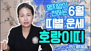 [용한무당 명지암] 2020년 양력 6월 띠별 운세 호랑이띠 [남양주점집]