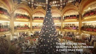Travel to paris for Christmas.....