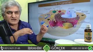 Ormus Gold'un Yapısı, Ormus Goldun Hücreye Etkisi, Serbest Radikallere Karşı Ormus Gold,