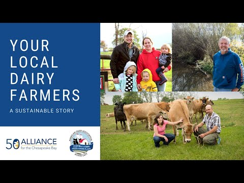 Your Local Dairy Farmers - A Sustainable Story