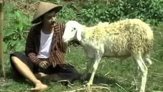 "Jhony Sayekti ""Njaluk Pegat"" [Javanese ballad]"