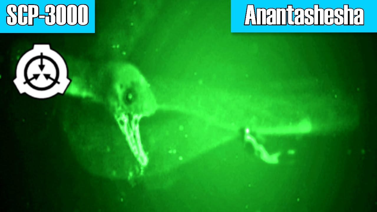 Scp 3000 Anantashesha Object Class Thaumiel Aquatic Cognitohazard Youtube Select from a wide range of models, decals, meshes, plugins, or audio that help bring your imagination into reality. scp 3000 anantashesha object class thaumiel aquatic cognitohazard