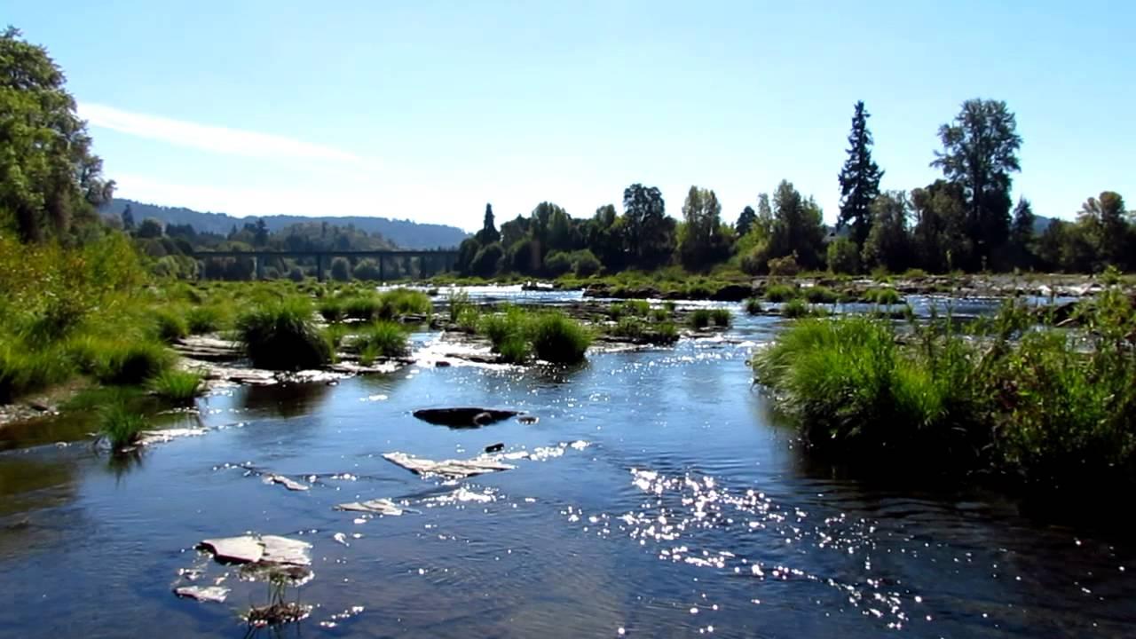 Umpqua River at Elkton Oregon Umpqua River