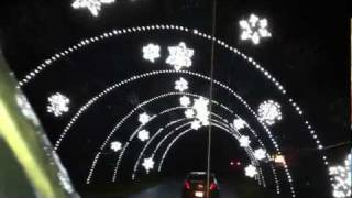 Surprises, Christmas Lights, Cabela's (Wesley and Shelby)
