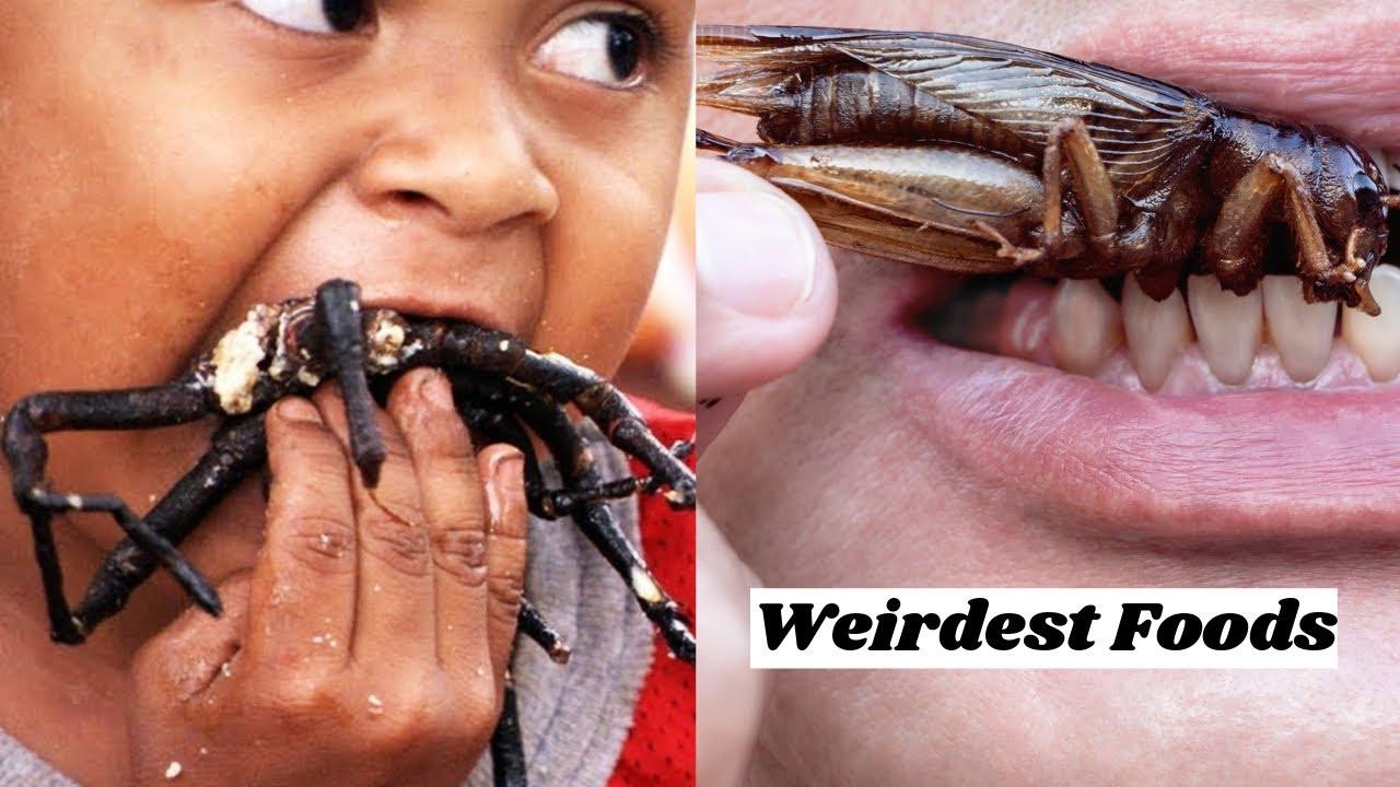 The 50 Weirdest Foods From Around the World