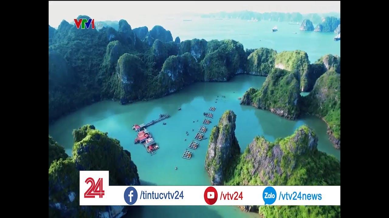 Du lịch Việt Nam chủ động tìm những cơ hội mới | VTV24