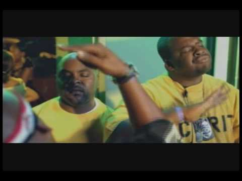 Raise Hell ( 2010 Remix ) - Hed PE feat. Lil Jon
