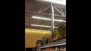 Theres a bird in walmart