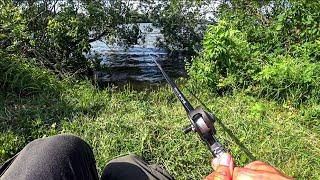 Рыбалка на КАРПА в КОРЯГАХ на кукурузу Ловля карпа на удочку с боковым кивком