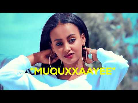 Leencoo Gammachuu   Muquxxaayee   New  Music 2019 Official Video   YouTube Mp4