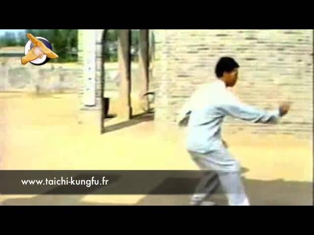 Chen Qing Huan - Tai Chi style Chen Erlu Paochui 1981  [陈氏太极拳小架 Taijiquan style Chen Xiaojia]
