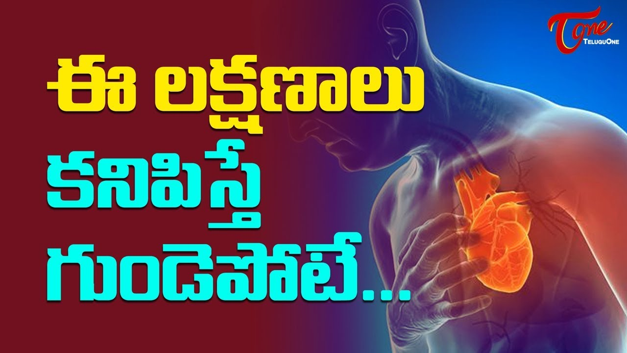 Heart Attack Symptoms In Telugu | Heart Disease | Health Facts