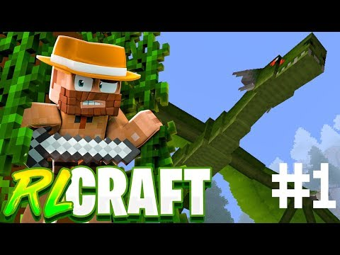 """THE INSANE BASICS!!"" 