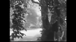 Boudewijn de Groot - Verdronken Vlinder