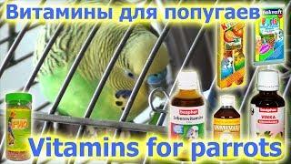 Vitamins for parrots. Витамины для попугаев