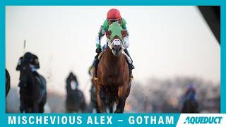 Mischevious Alex - 2020 - Gotham