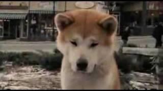 trailer de Hachiko en Español