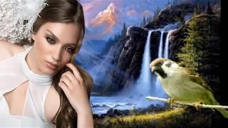 Download Кукушка  Обалденно красивое видео и песня о женском счастье Mp3 and Videos