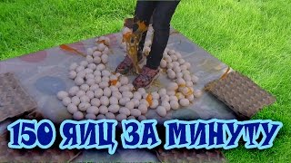 Бью рекорд Гиннесса // 150 яиц за минуту // 150 eggs per minute // NEW Guinness Record for kids