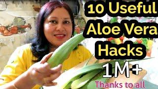 एलवर क इसतमल करन क १० चमतकर तरक  10 Aloe Vera Hacks  Aloe Vera Jell