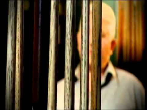 Ronnie O'Sullivan's Cue l John Paris
